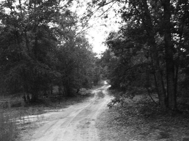 Dirt road, black and white photo